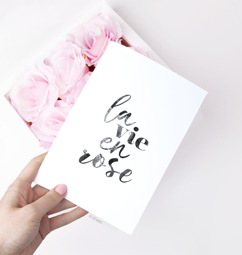 carnet la vie en rose